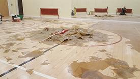 Floor Sander Leyland